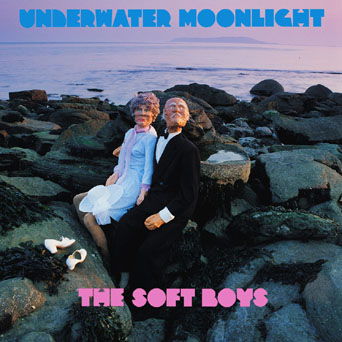 The Soft Boys Underwater Moonlight