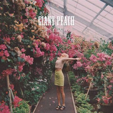 wolf-alice-giant-peach