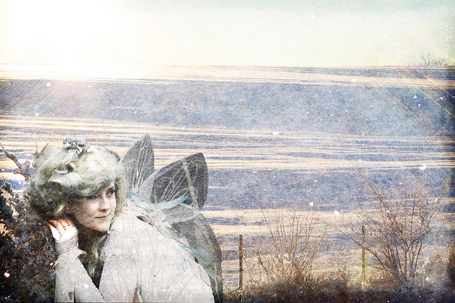winter fairy 2016